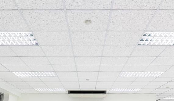 Image Service Ceilings